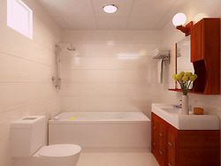 bathroom2-1541403500.jpg